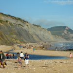 Charmouth, World-Famous for Fossil-Hunting